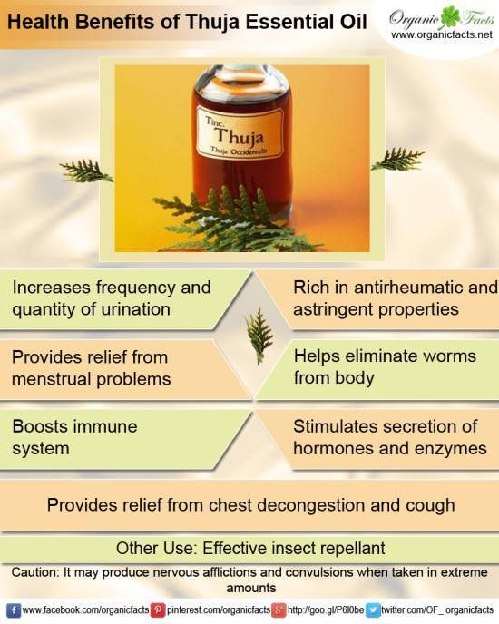 Amazing Cedar Leaf Thuja Essential Oil