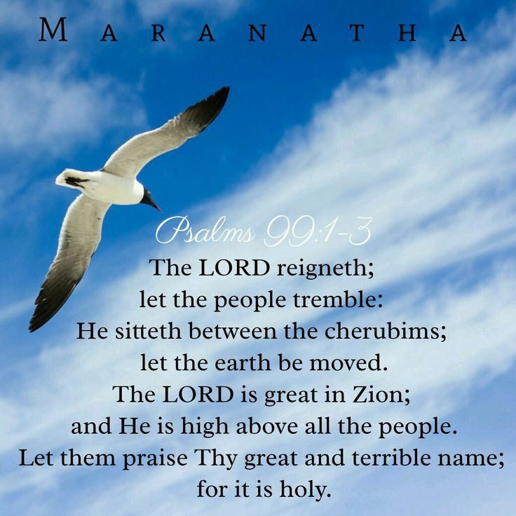 #Psalms 99:1-9 (KJV) The LORD reigneth; let the people tremble: he sitteth between the cherubims; let the earth be moved. The LORD is great in Zion; and he is high above all the people. Let them praise thy great and terrible name; for it is holy. #MARANATHA
