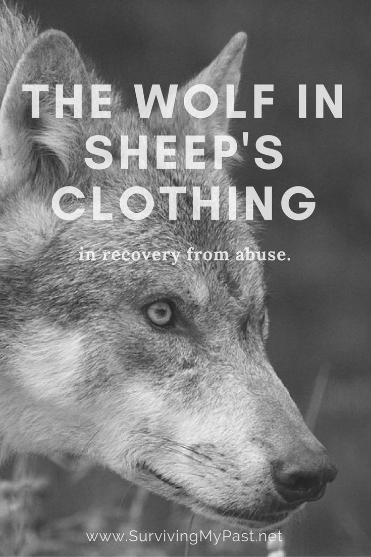 The wolf in sheep's clothing, in your recovery. via @SurvivingMyPast - http://www.survivingmypast.net/who-is-your-wolf-in-sheeps-clothing/
