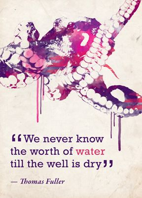 """We never know the worth of water till the well is dry."" #water #conservation #quotes"