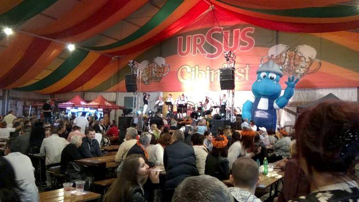 Cibinfest - Oktoberfest pe românește