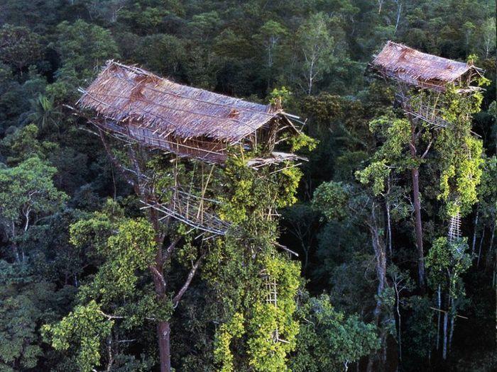 trek-papua.com