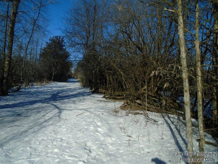Snow covered Trails at Potters Creek Conservation