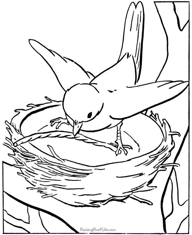 free printable kid coloring page of bird