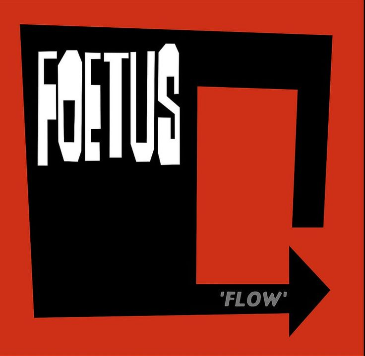 FLOW (Front cover)