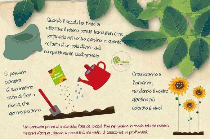 La eco-storia del vasino biodegradabili