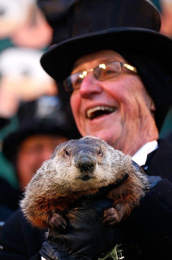 A marmota Phil durante o 127º Dia da Marmota, famosa cerimônia comemorada sempre em 2 de fevereiro