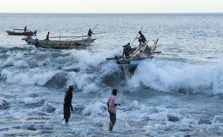 Back from Fishing at Lamalera - Lembata island, Indonesia