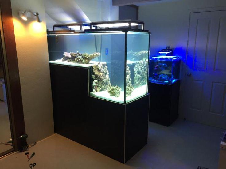 drop off reef tank for sale google search aquarium pinterest for sale glass aquarium and tanks