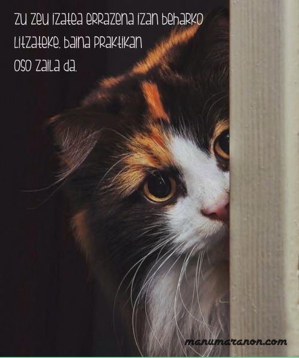 Check out my new PixTeller design! :: Zu zeu izatea errazena izan beharko litzateke, baina praktik...