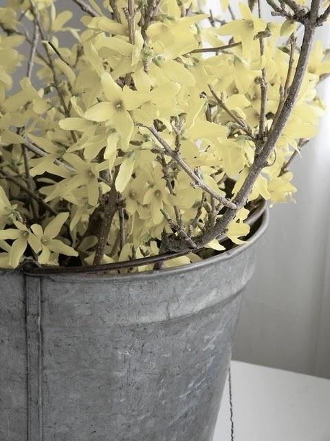 Zinc Spring Bucket