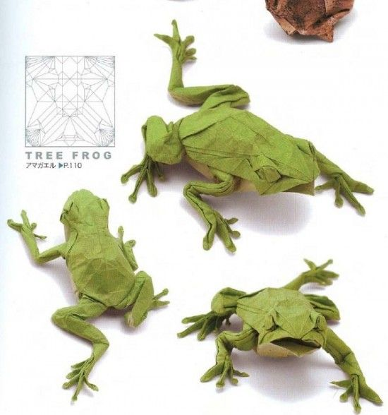 Origami Frog | Origami > Tree Frog Origami