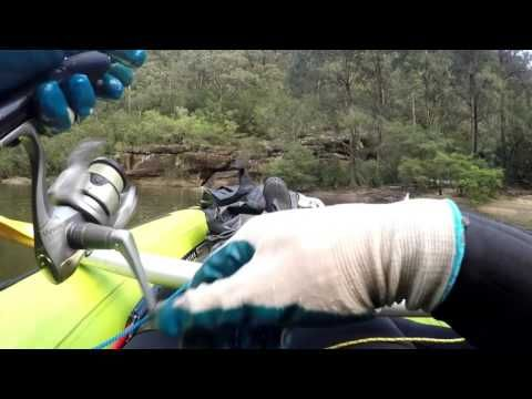CATCHING AUSTRALIAN BASS DEADLY LURES SHAKENWAKE LURE TEST
