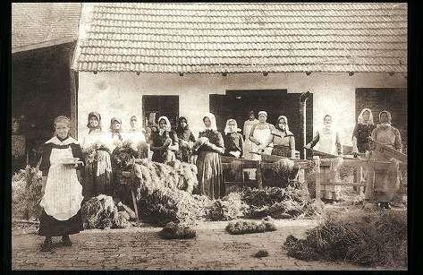 Kendertörés. Közép-Békés. Békéscsaba, 1929. Békés ...   Képcsarnok   Hungaricana
