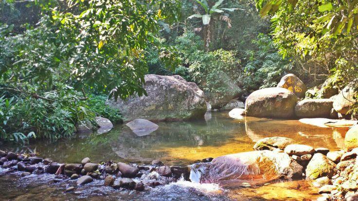 Cachoeira Vargem Grande - RJ