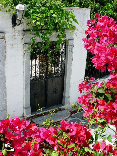 """Black iron gate framed by bougainvillea"".. Halki, Naxos island, Greece / by Marite2007 on flickr"