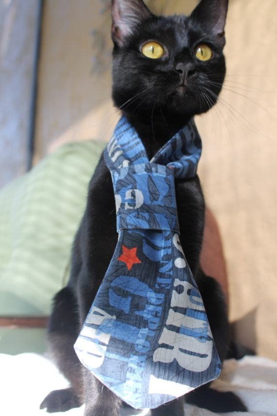 Military Cat Tie Accessory Air Force Inspiration :)