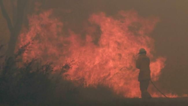 Stunning pictures posted on Twitter as bush fires rage around Sydney