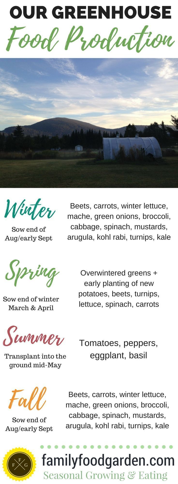 Growing a vegetable garden year-round in a greenhouse