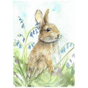 Claire Barone Bluebell Bunny Canvas