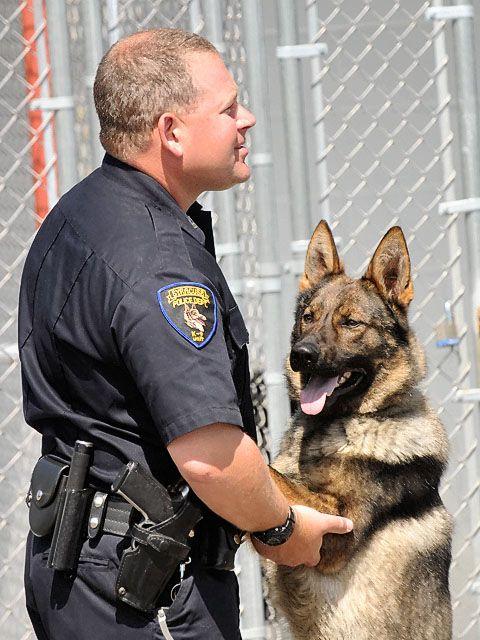 622 best Heroes Police Dogs images on Pinterest German shepherd - k9 officer sample resume