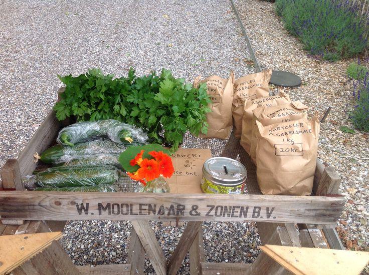 Min lille vejbod, hvor jeg sælger blå, røde og almindelige kartofler, persille, agurker og andet.