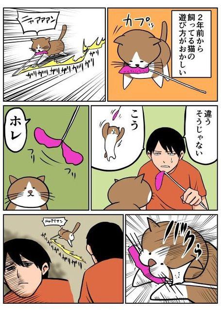 あるあるすぎて腹筋崩壊www この猫漫画が面白すぎてフォロー不可避!!! : 〓 ねこメモ 〓