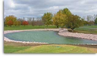 Backyard pond liners for sale!