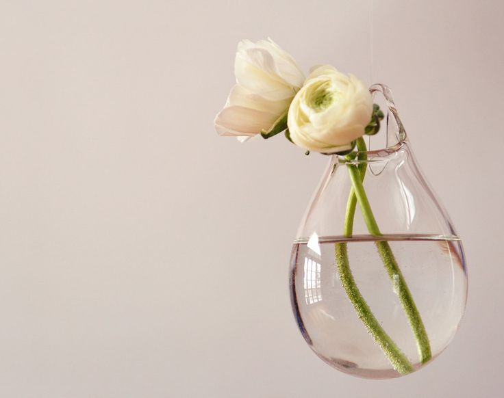 Hanging Wall Vase / Hand Blown Glass Art / Transparent Clear Glass / Wall Decor / Wall Art by AvolieGlass on Etsy https://www.etsy.com/listing/179652560/hanging-wall-vase-hand-blown-glass-art