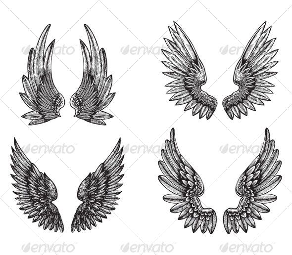 wings design — Vector EPS #clean #purity • Available here → https://graphicriver.net/item/wings-design/62762?ref=pxcr