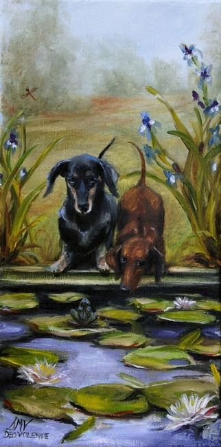 """""""Curious""""  Dachshund Rescue Dogs 
