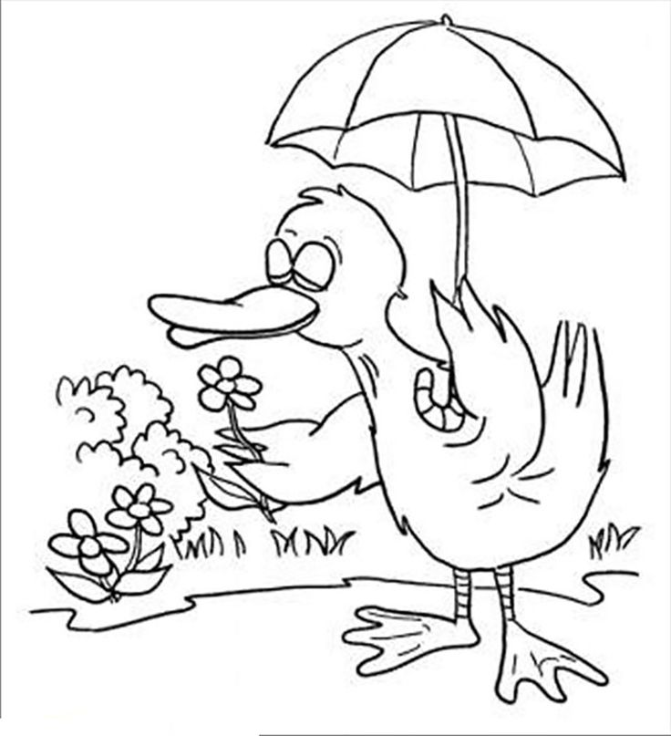 18 best gardening coloring pages images on Pinterest  Gardens