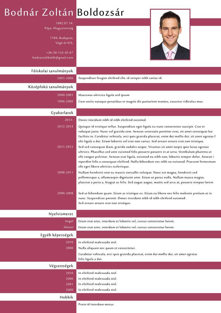 P1 Design CV