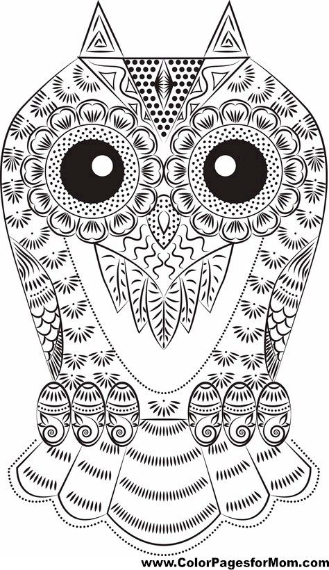 593 Best Images About Folk Art Patterns Printables On