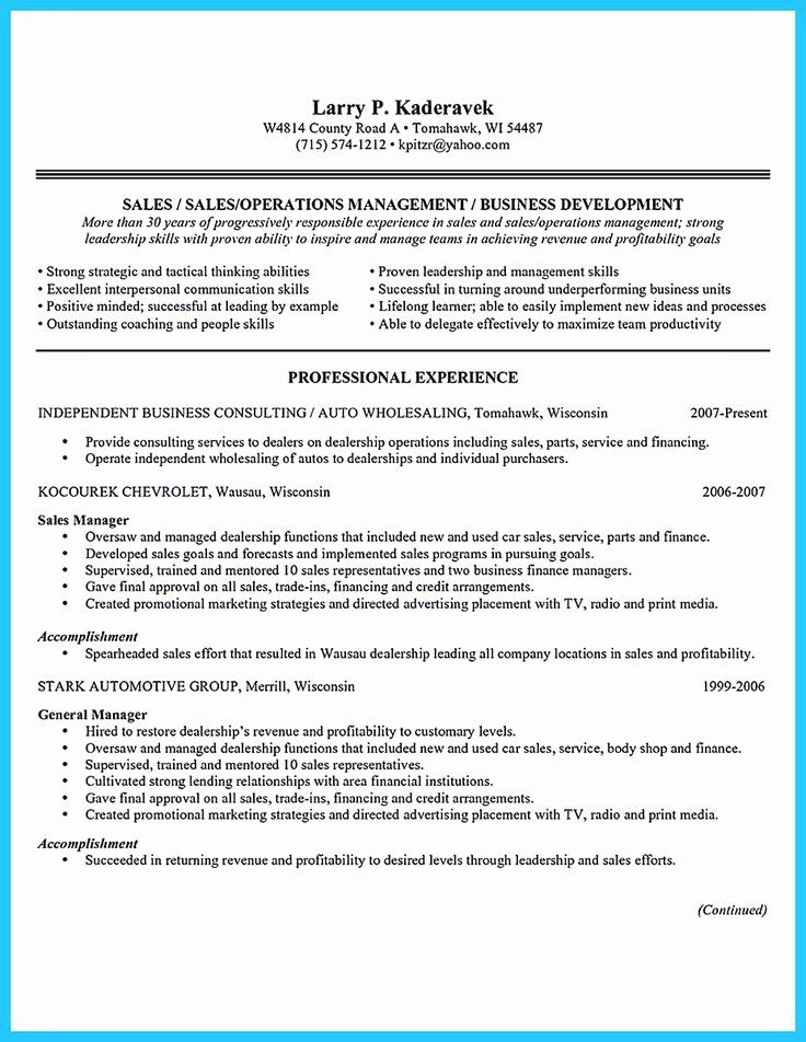 20 Auto Finance Manager Resume in 2020 Sales resume