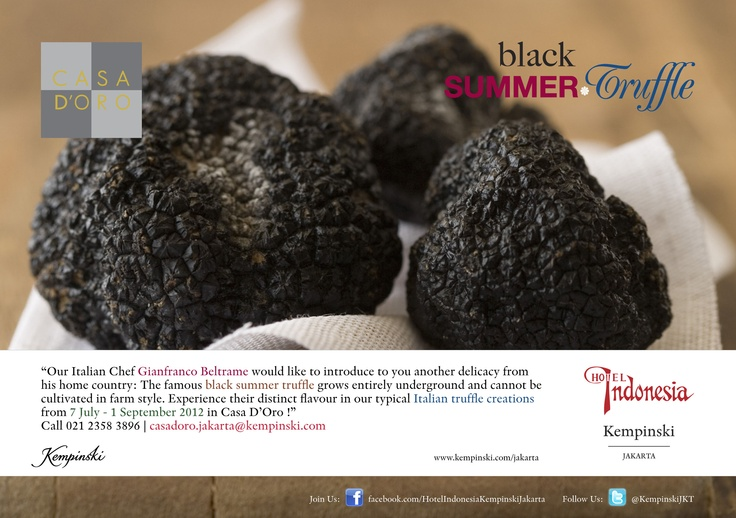 Casa D'Oro: Black Summer Truffle  ||  Our Italian Chef Gianfranco Beltrame would like to introduce to you another delicacy from his home country: The famous black summer truffle grows entirely underground and cannot be cultivated in farm style. Experience their distinct flavour in our typical Italian truffle creations from 7 July - 1 September 2012 in Casa D'Oro!    Call 021 2358 3896 | casadoro.jakarta@kempinski.com