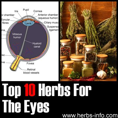 Herbs For Eyes - detailed list with research, references and background info.