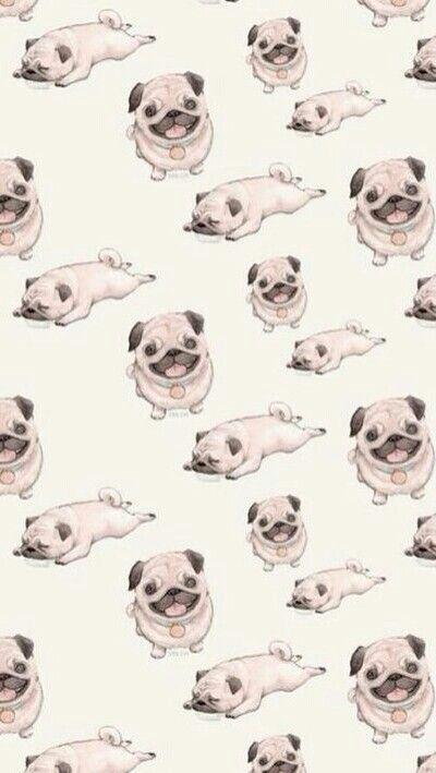 Cute Dog Vintage Iphone 5 Wallpaper My Love Pinterest