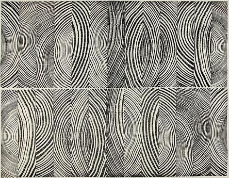 WoodcutGoogle Image, Illustrations Art, Drawing Inspiration, Artists Spotlight, Bryans Nash, Pattern Inspiration, Nash Gill Lov, Fossils Blog, Doshi Olsson Fyllayta