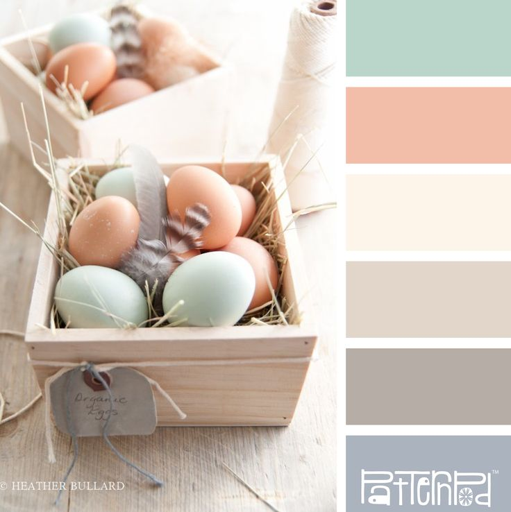 Eggshell Pastels - this color palette would make for a soft, romantic wedding, lots of flowing fabric and ruffled flowers.