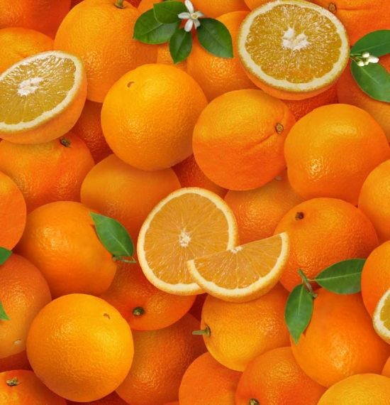 261-orange, Food Festival, Fabric Collections, Elizabeth's Studio LLC