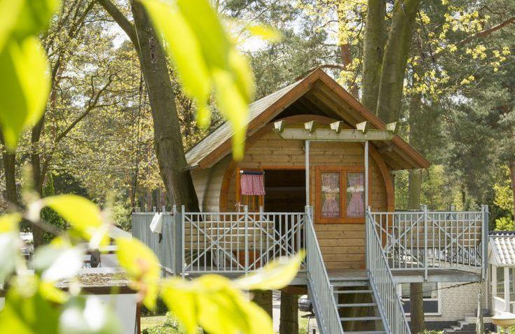 Avontuurlijk kamperen bij Kampeerbos De Simonshoek in Limburg kan in een boomhut met talloze faciliteiten.