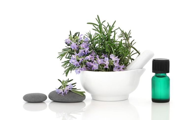 """Rosemary is a woody, perennial herb with fragrant, evergreen, needle-like leaves, flowers with colors that range from white, pink, purple, or blue and derives its name from the Latin words for """"dew"""" (ros) and """"sea"""" (marinus), or """"dew of the sea"""". A member of the mint family Lamiaceae, the rosemary"""