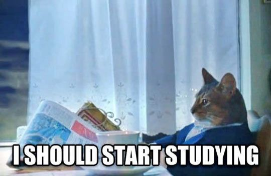 What every student is thinking right now…