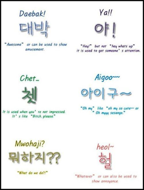 #korean Use some native speaking words to talk with them. via ow.ly/mJV4300gCSc #Bravolol