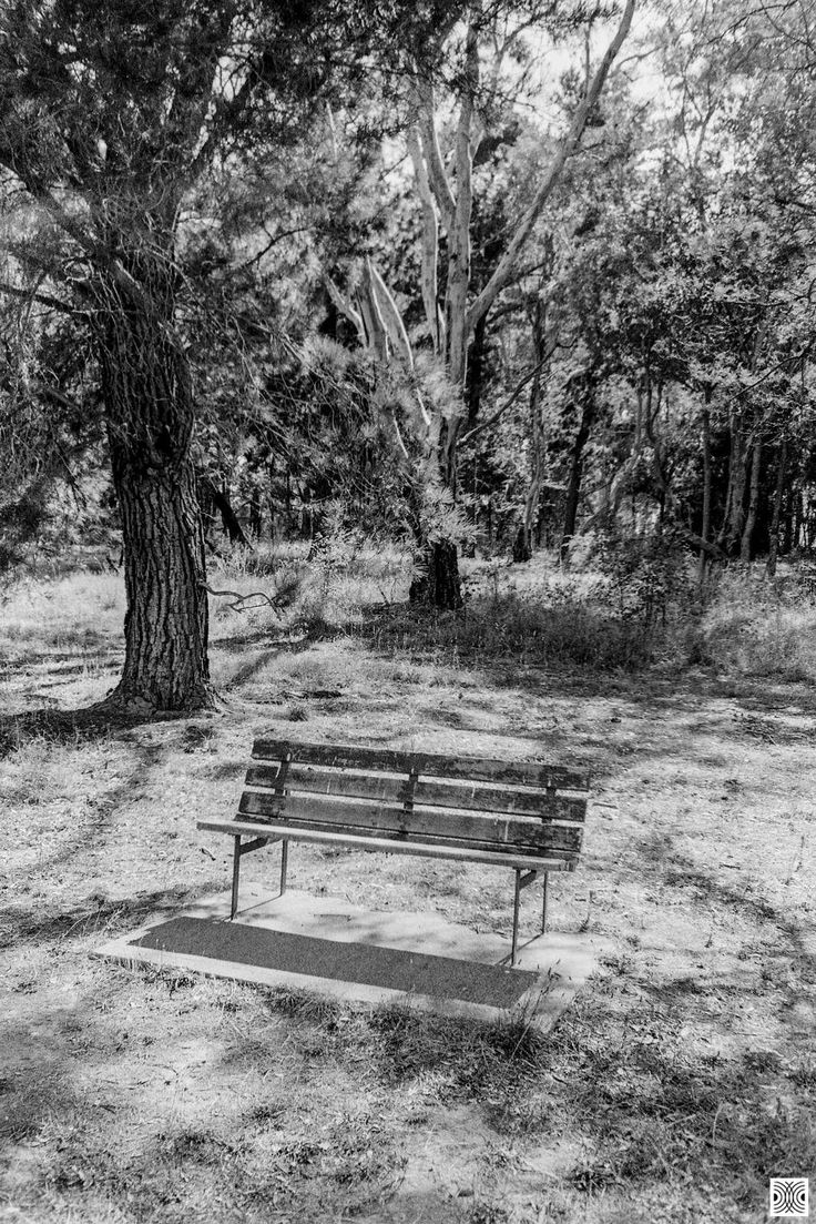 https://flic.kr/p/23Xf8Rt | bench | My Canberra - on film mainly around Yarralumla, back in 2014  ... a bench in the bush ...  Olympus Mju 2, Kodak T-Max 100  www.pavelvrzala.com