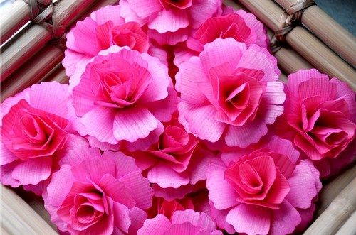 Soft Pink Carnations made of Birch wood shavings