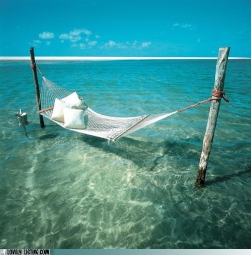Another hammock in the oceanSpaces, Favorite Places, Dreams, The Ocean, Hammocks, Places I D, Travel, Beach, Heavens