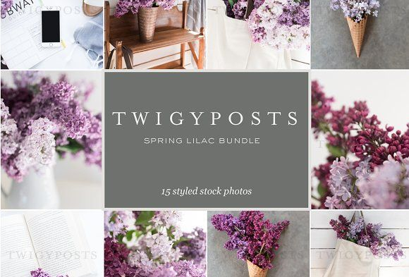 This gorgeous set of stock photos is just for you. With 15 images and mockups all created with a spring inspired theme, you will be able to easily style your Instagram feed for weeks, make amazing graphics and spruce up your blog for less than the cost of a date night! ($15). #ad #plant #spring #lilac #minimal #stock #photo #bundle #photography