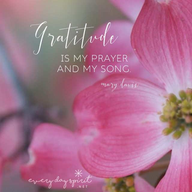 Thanks in all things. For the app of uplifting wallpapers ~ www.everydayspirit.net xo #gratitude #thankful